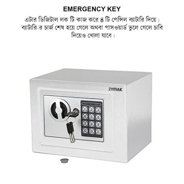 You can use emergency key if you forget your password